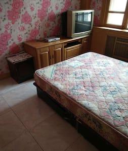 扣肉家不奢华,但是房东用一颗真挚的心在等待你 - Tianjin - Apartment