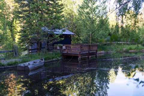 FLYING FISH - MODERN CABIN AT CONSTELLATION CREEK