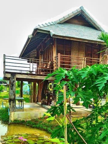 """Baan Kaao"" At Hug Baan Kaao - Tambon Sanklang - บ้าน"