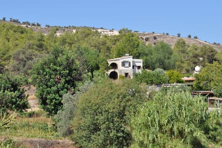 Villa Menorah B&B Larnaca rustic - Bed & Breakfast
