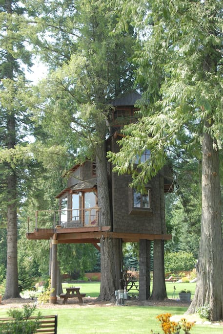 Side view of treehouse