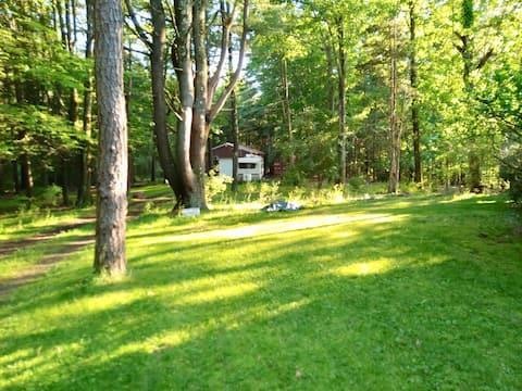 "Beautiful, Peaceful, Woodland ""Tiny House"""