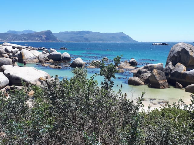 Boulders Beach Lodge & Restaurant - Mountain View