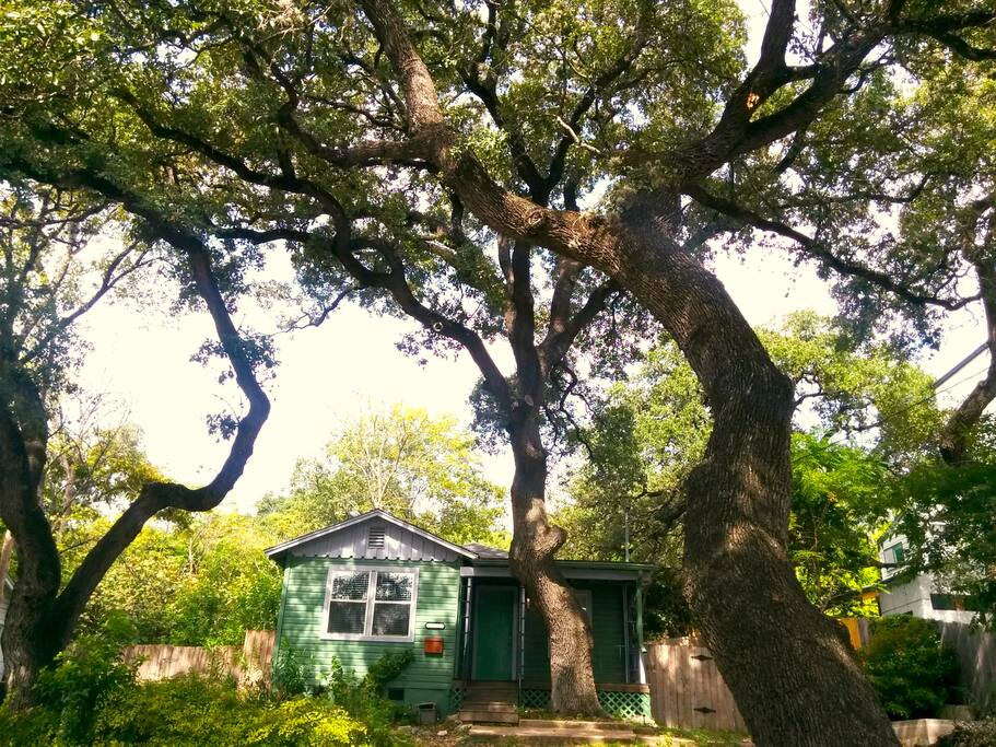 Beautiful live oaks provide generous shade to the charming cottage and the front yard/parking area.