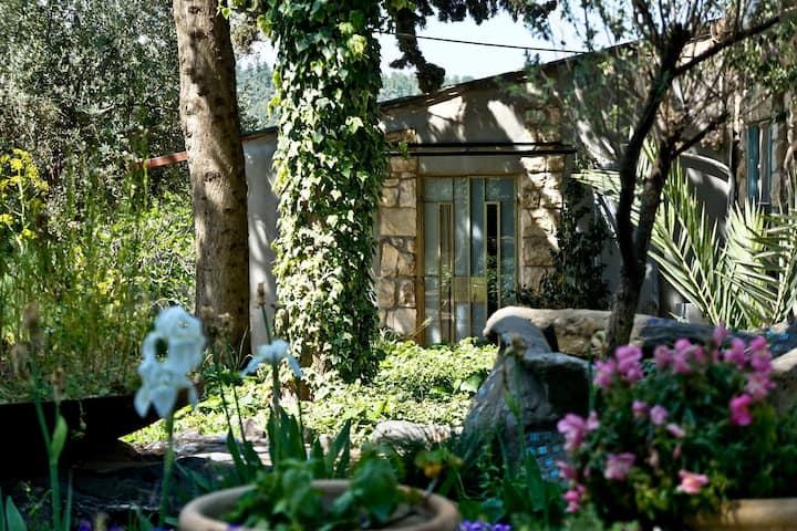 Beautiful cabin in Biriya forest
