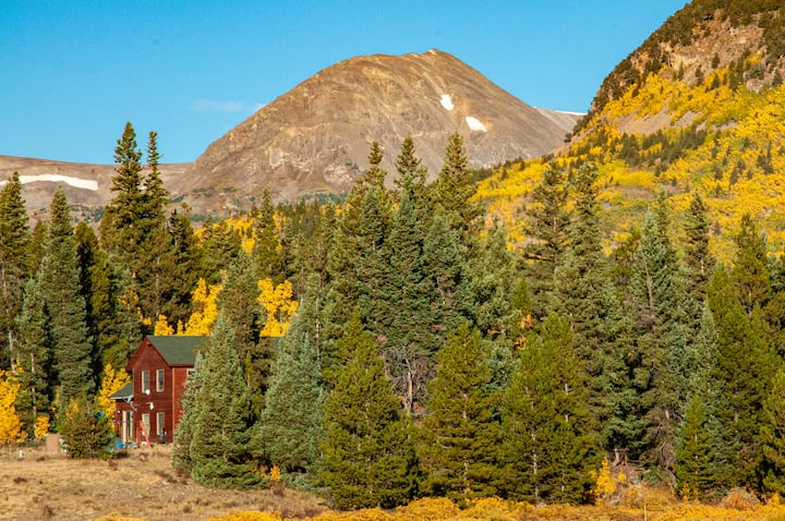 NEW! Scenic Alma Home on 2.5 Acres w/ 14'er Views!