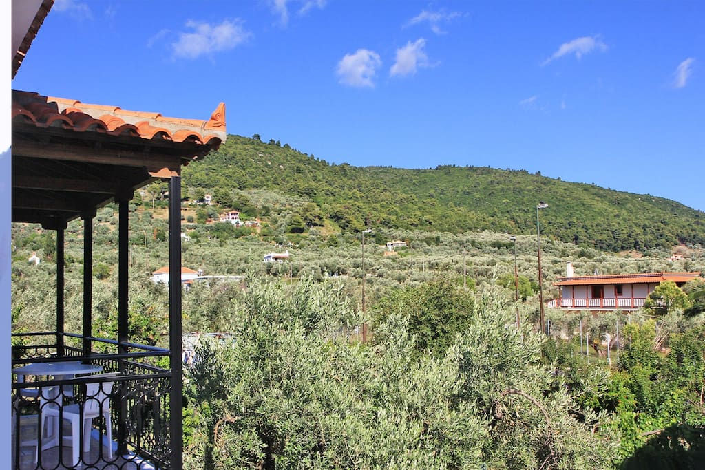 View to Stafylos valley from covered, private balcony.