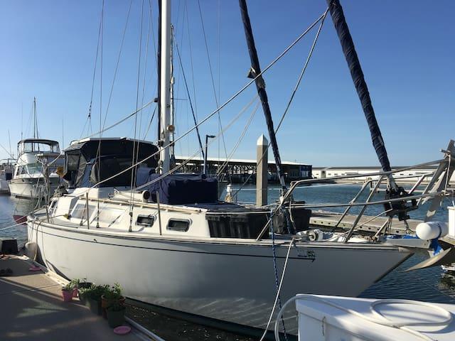 Your ideal getaway on a SAILBOAT! - Port Aransas - Barca