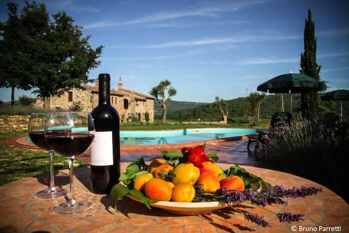 Relax nelle verdi colline toscane - Monterotondo marittimo - Lejlighed