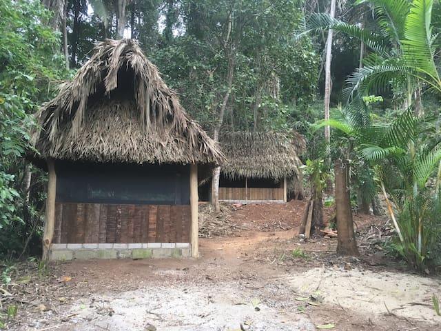 Las Palmitas 3 bedroom Jungle Retreat