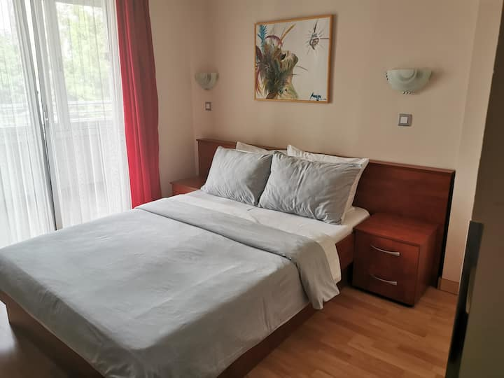 Dental Apartment 216 -  one room, Vrnjacka Banja