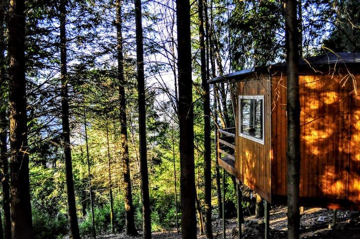 Treehouse Experience Gerês