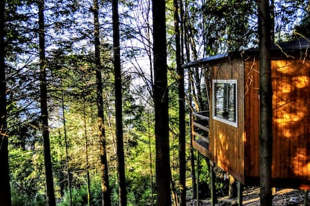 Amanita Treehouse Experience Gerês
