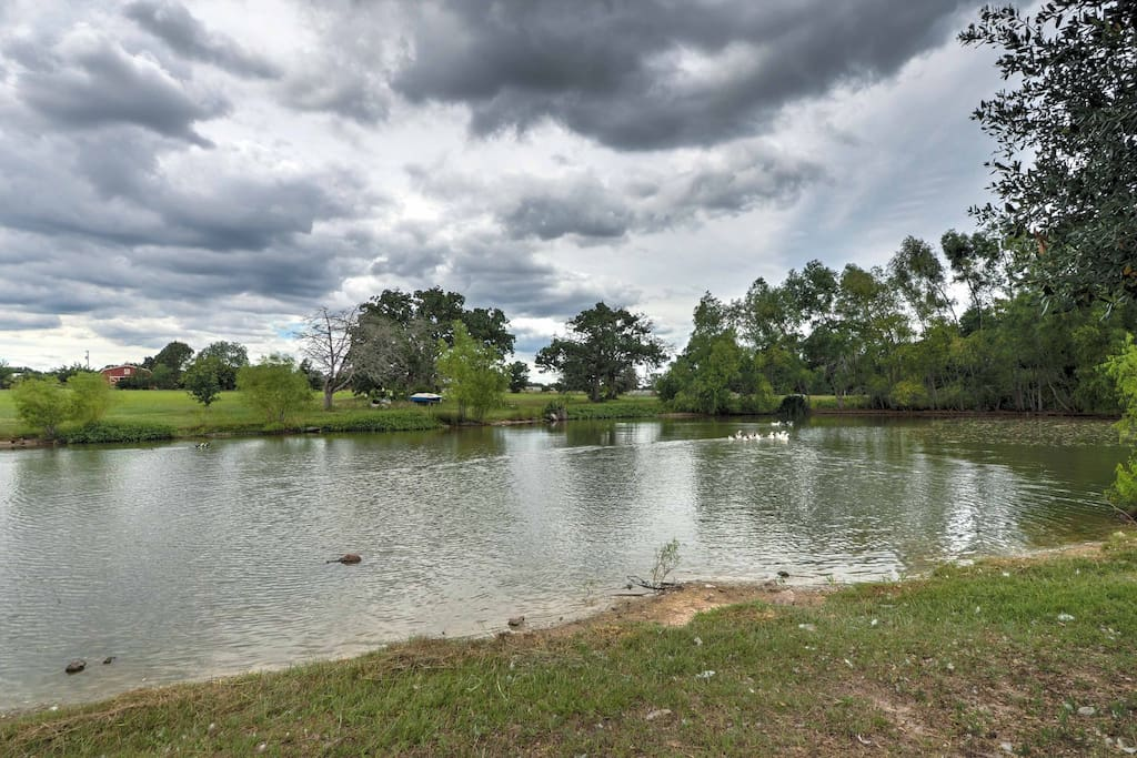 The pond in the backyard is ideal for fishing and paddle boating.