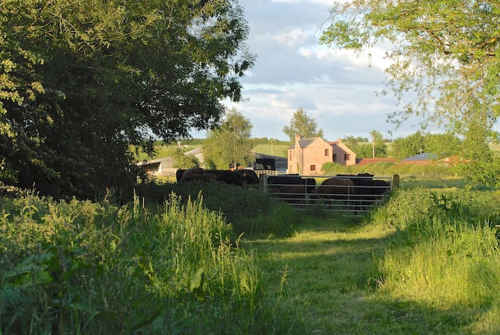 RYECROFT FARM LODGE - Barrow upon Soar