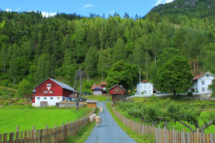 Nordigard Bjørge Gjestegard - Seljord