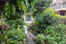 House garden at the heart of the city