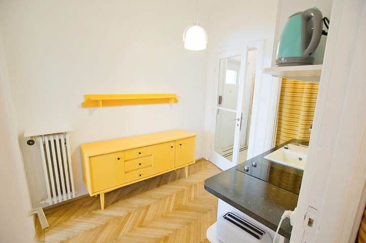 Vintage Apartment in City Center - Bükreş - Daire