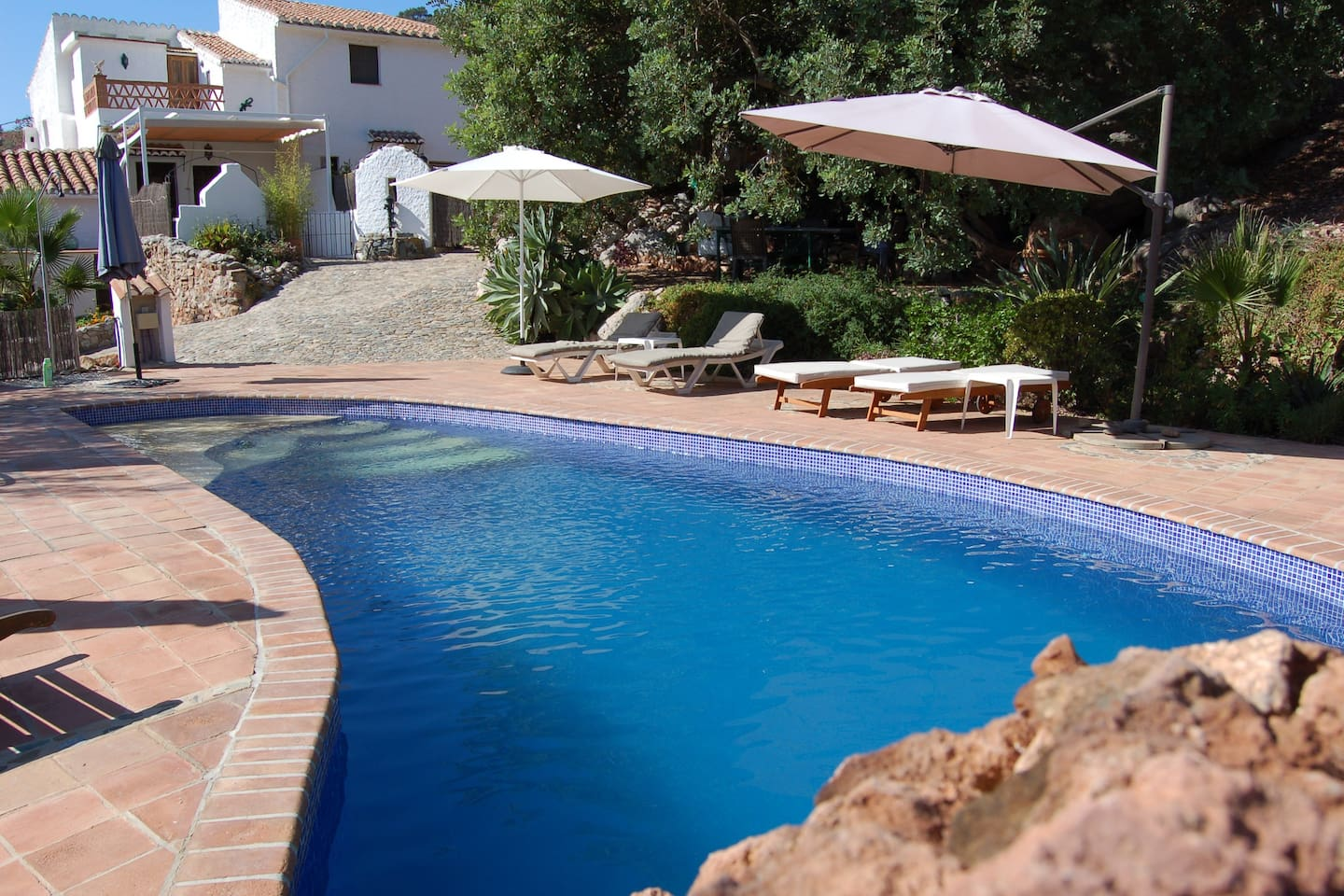 Our wonderful pool and lounge steps