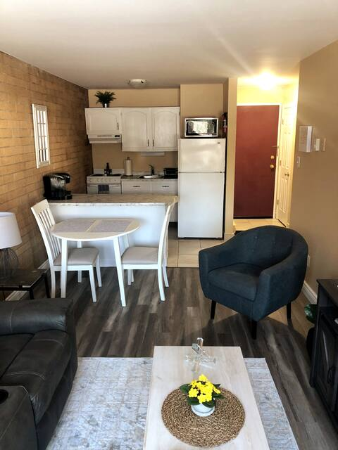 Newly Renovated 1 Bedroom Downtown Apartment