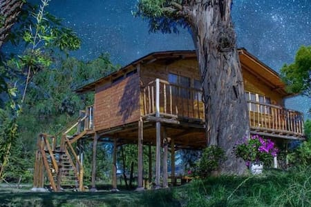 Estancia Vergara Casa del Árbol