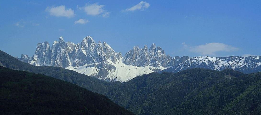 Agriturismo tranquillo in montagna - Bressanone - Apartament