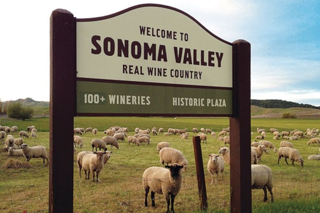 In the heart of the wine country, Sonoma Valley.