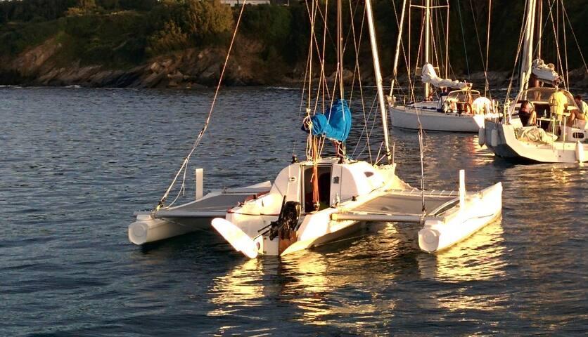Trimaran Au Mouillage Bateaux 224 Louer 224 La Trinit 233 Sur