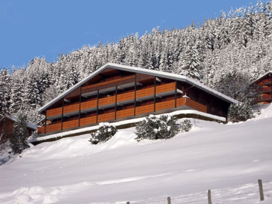 Apartment in Winter