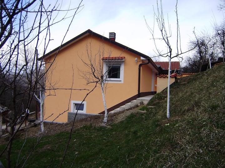 Holiday house Vasilija