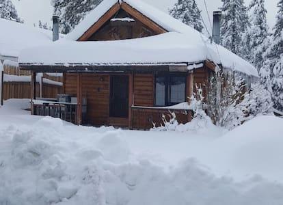 Art's Big Bear Lake Cabin - 大熊湖 - 小木屋