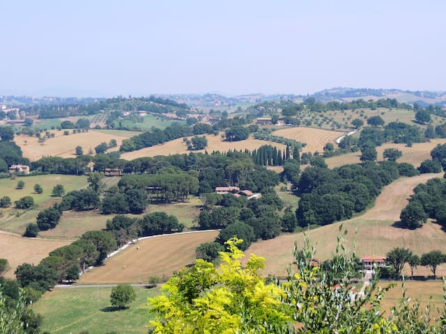 Glicine -Relax and nature near Rome - Collevecchio - Apartment