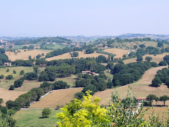 Glicine -Relax and nature near Rome