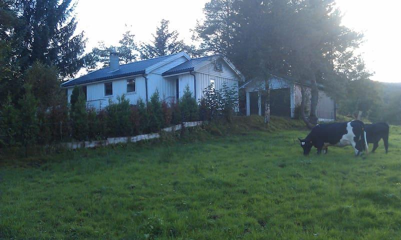 Idyllisk feriehus solfylt og familievennlig i Etne - Etne - Cabana