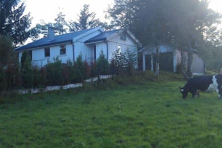 Idyllisk feriehus solfylt og familievennlig i Etne - Etne - Бунгало