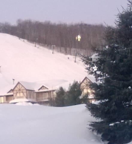 Boyne Mountain 1-bedroom apartment