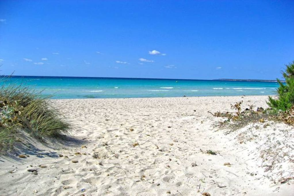 Playa Sa Rapita