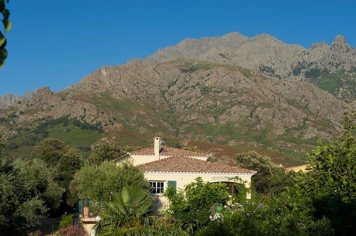 Grande villa au coeur de la Balagne - Calenzana