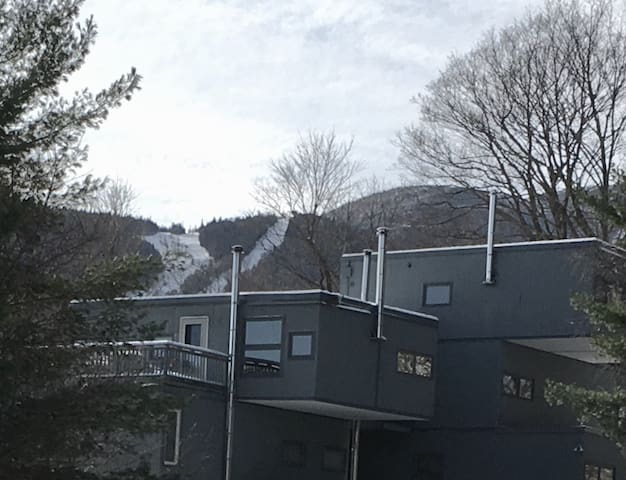Sugarbush Ski Mountain Condominium