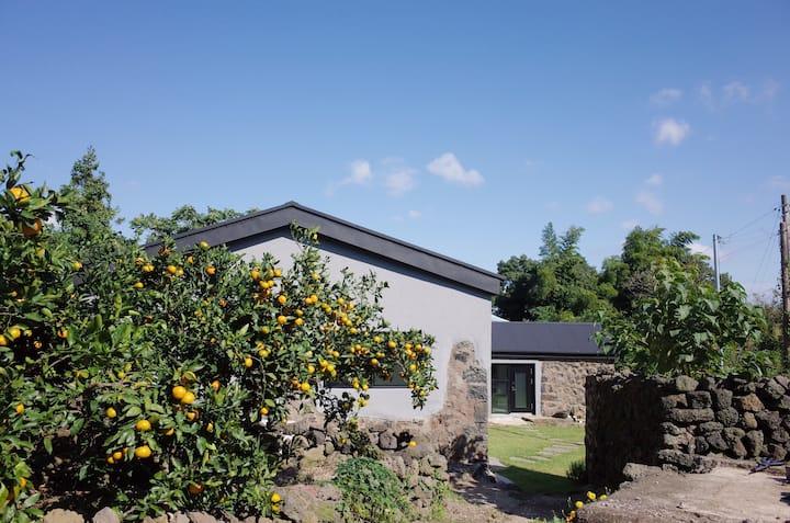 Tangerine field Rental house 'HONA'