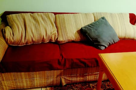 Couch for Solo Travelers or Two. - Dom
