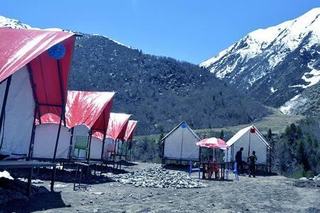 Quad Room (PP Camp)