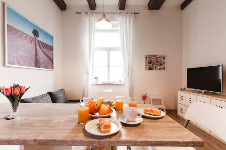 CHILL in Cosy Apartment with Netflix!! - Praha - Huoneisto