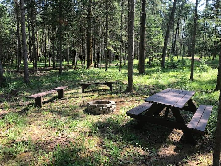 Terrain de camping 11