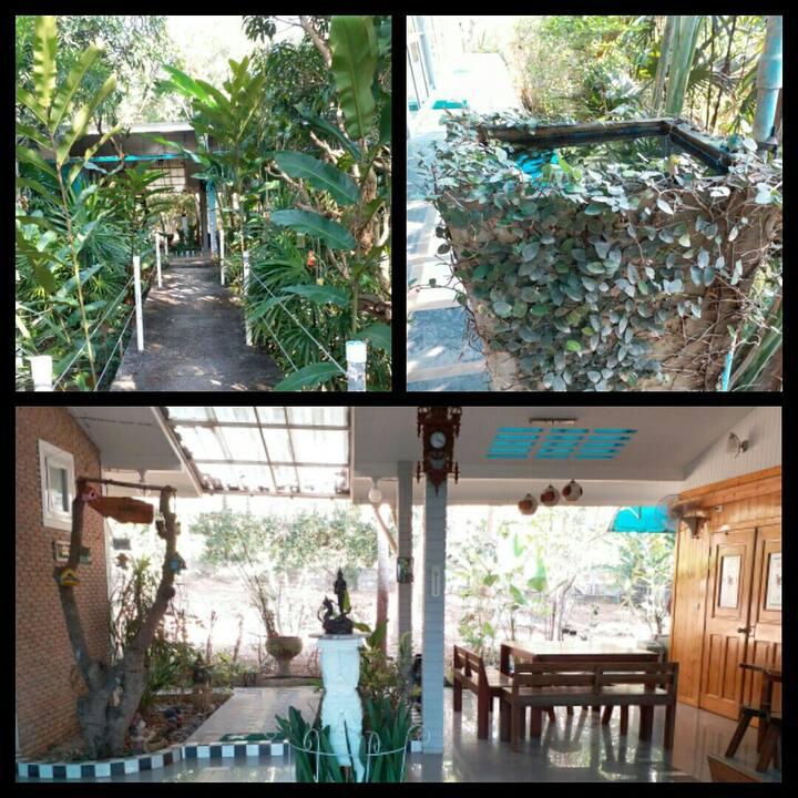 Villa Green House near Bats cave Kao Yai