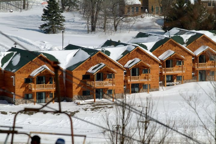 Gorgeous Townhouse at Greek Peak Ski Resort - Cortland - Reihenhaus