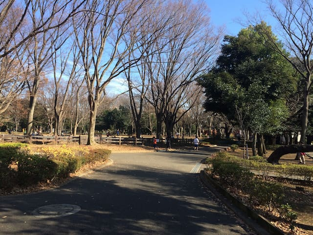 Setagaya park is within 5-minutes walk from our house.