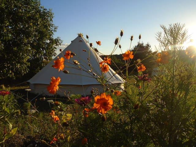 Belle Tente de charme dans un camping écologique