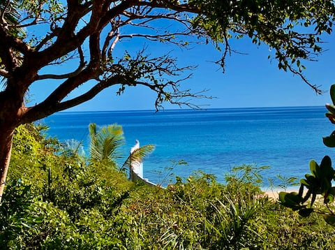 Cute Cottage / Gardens / Superb Ocean Views!