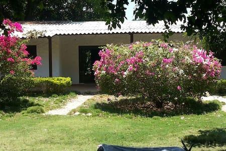 Casa campo la vega - La Vega Arriba - Hus